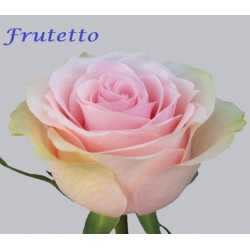 Frutetto